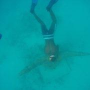 snorkelling in Cape Verde Sal